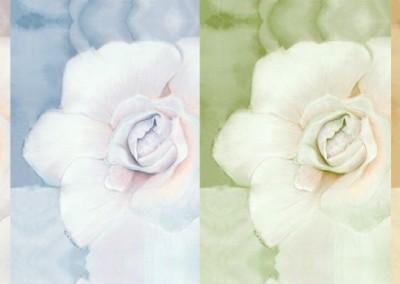 enchantedbloomslider-1024x381