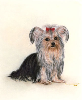 L.A. CLINE Fine Art - Custom Pet Paintings
