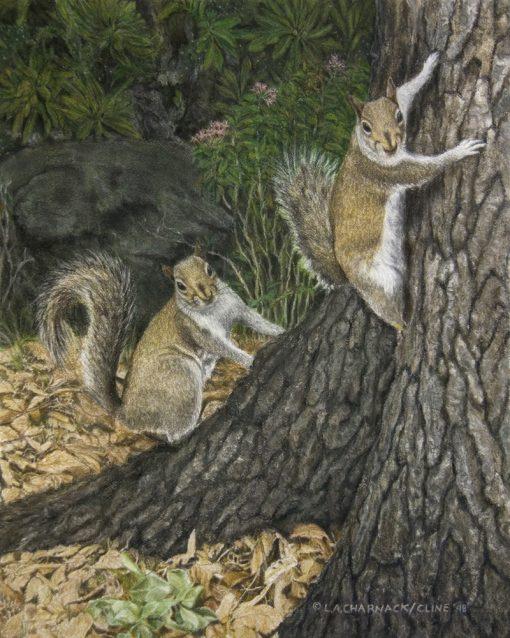 Squirrels-watercolor