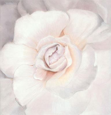 Enchanted Bloom
