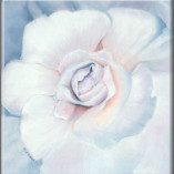 Enchanted Bloom Fine Art Giclee Blue