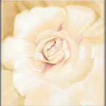 Enchanted Bloom Fine Art Giclee Gold