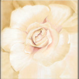 Enchanted Bloom Fine Art Giclee Gold