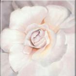 Enchanted Bloom Fine Art Giclee Lavender